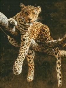 Изображение Отдыхающий леопард (Hypnotic Leopard)