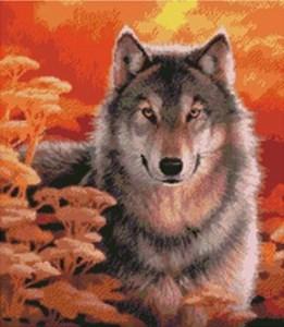 Изображение Взгляд - Серый волк на закате (Gaze-Grey Wolf at Sunset)