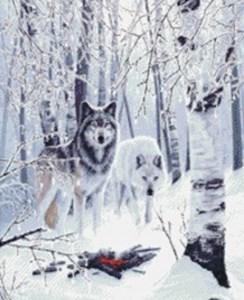 Изображение Зимние волки (Winter Wolves)