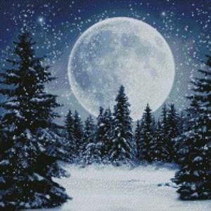 Изображение Зимняя луна (Winter Moon)