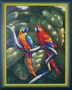 Изображение Краски джунглей