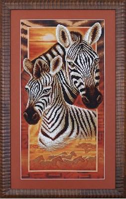 Изображение Африка: Зебры