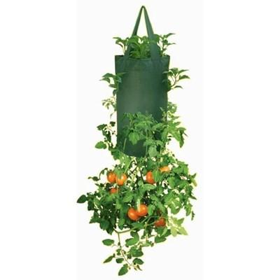 Изображение Емкости для посадки томатов (2 в упаковке)