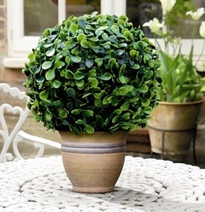 Изображение Искусcтвенное растение Topiary Ball 15cm крупные листья