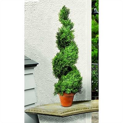 Изображение Искусственное растение Swirl Border 80cm кипарис