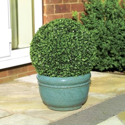 Изображение Искусственное растение Topiary Ball 30cm листья