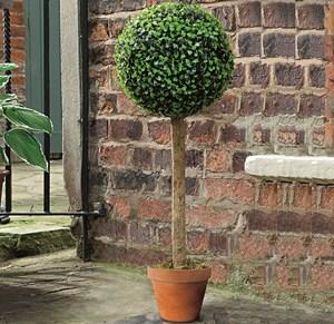 Изображение Искусственное растение Topiary Ball дерево 80cm