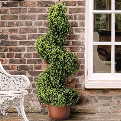 Изображение Искусственное растение лиственное Topiary Spiral 80cm