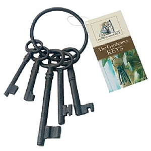 Изображение Набор ключей декоративный