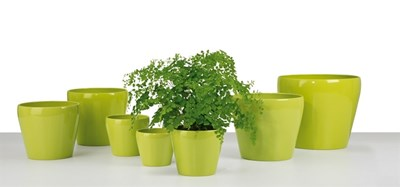 Изображение Кашпо 800 Tropical Green D23cм, керамика