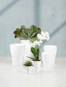 Изображение Кашпо для орхидеи 608 Panna D22cм, керамика