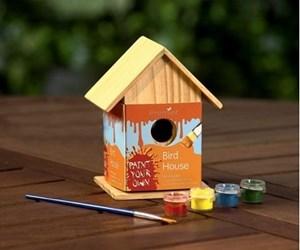 Изображение Домик для птиц + акриловые краски