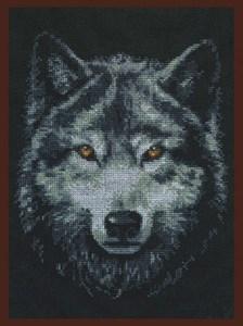 Изображение Взгляд волка