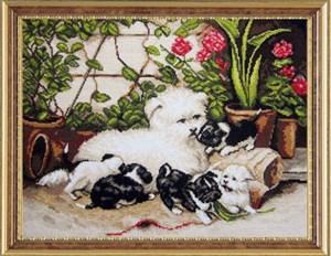 Изображение Щенки в саду
