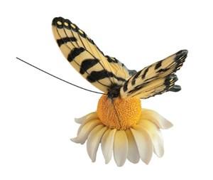 Изображение Магнит Бабочка Swallowtail
