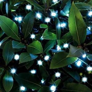 Изображение Гирлянда на батарейках 48 LED цвет теплый белый  5,75м