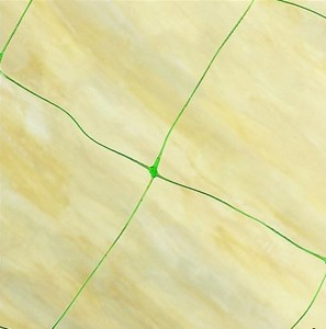 Изображение Сетка для бобовых и других вьющихся растений 6 * 1,7м