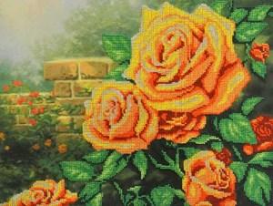 Изображение Желтые розы
