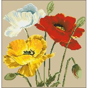 Изображение Маковое трио (Poppy Trio)