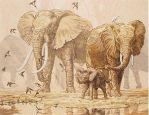 Изображение Африканские слоны и голуби (African Elefants and Namaqua Doves)