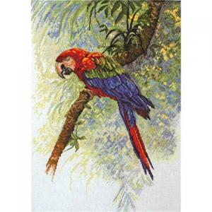 Изображение Попугай (Parrot)
