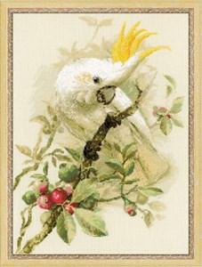 Изображение Белый какаду