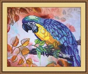 Изображение Попугай