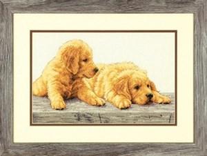 Изображение Щенки золотистого ретривера (Golden Retriever Puppies)