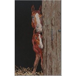 Изображение Лошадь и жеребенок (Horse and Foal)