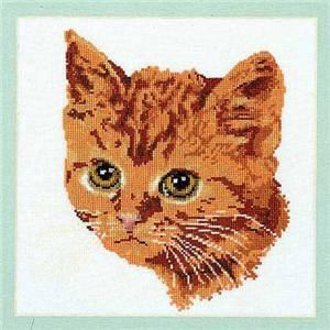 Изображение Красный кот (Red Cat)