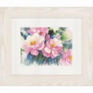 Изображение Прекрасные розы (Beautiful Roses)