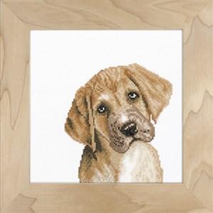 Изображение Неотразимый щенок (Irresistible puppy)