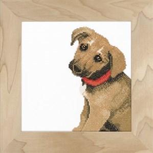 Изображение Милый щенок (Adorable puppy)