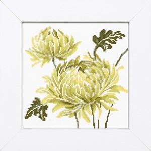 Изображение Лимонно-зеленый цветок 2 (Lime green flower II)