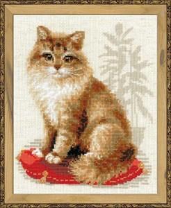 Изображение Кошка домашняя