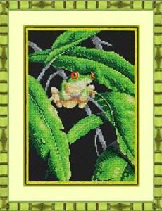 Изображение Древесная лягушка