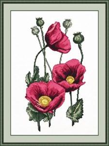 Изображение Цветы грез