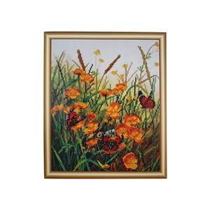 Изображение Бабочки на полевых цветах