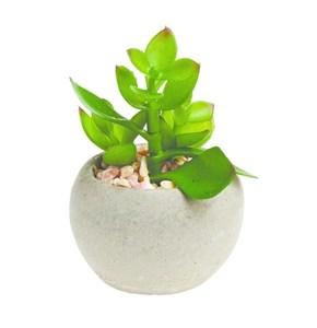Изображение Искусственное растение суккулентное в горшке