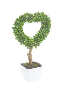 Изображение Искусственное топиари Heart Topiary 42см в горшке, 10 LED лампочек, на батарейках