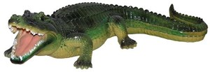 Изображение Аллигатор