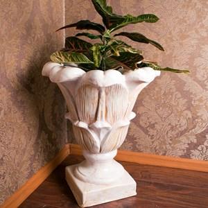 Изображение Чаша лилия