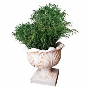 Изображение Чаша с листьями