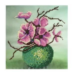 Изображение Яблоневый цвет
