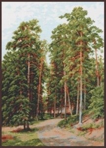 Изображение Солнце в лесу