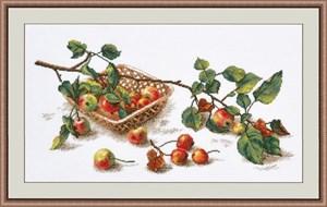 Изображение Ветка яблок