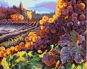Изображение Тосканский урожай