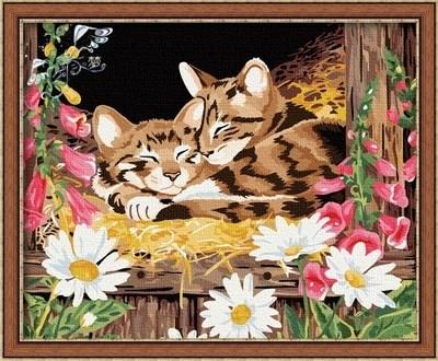 Изображение Котята