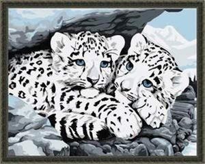Изображение Белый леопард