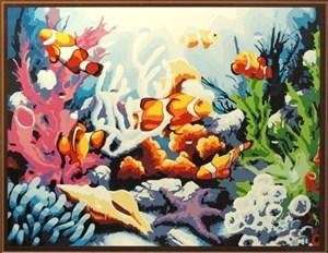 Изображение Яркие рыбки